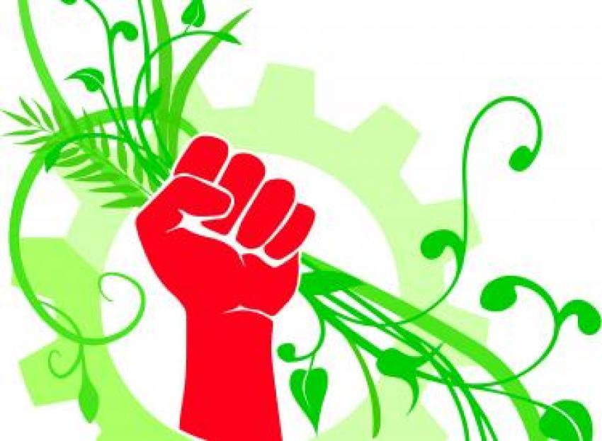 ecosocialiste